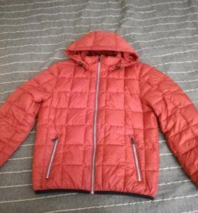 Куртка мужская М(50)
