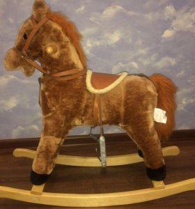 Музыкальная лошадь