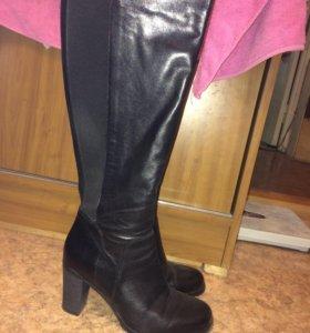 Сапоги новые кожаные женские