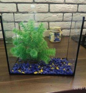Аквариум небольшой для рыбок и черепахи