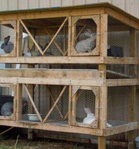 Клетки для кроликов под заказ .