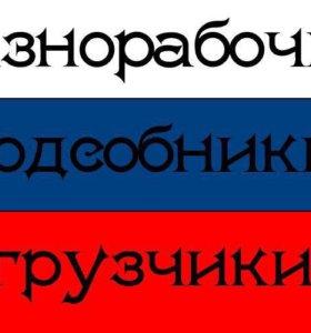 РАЗНОРАБОЧИЕ С РУКАМИ КОТОРЫХ ВЫ ИСКАЛИ ГР. РФ