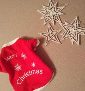 Рождественские кофточки для ваших любимцев!