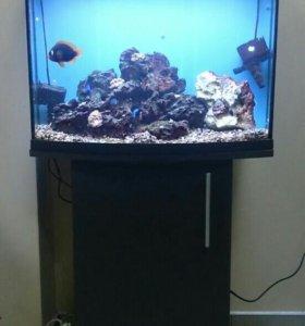 Продам морской аквариум