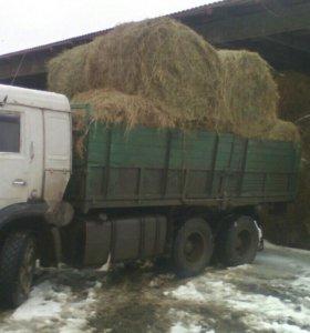 "Грузоперевозки ""камаз"" доставка 6 метров"