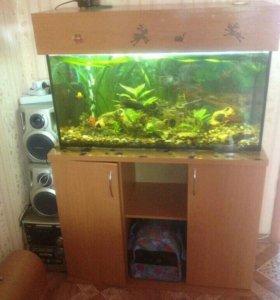 Продаю аквариум 120литров.
