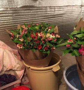Цветы , фейерверки , шары