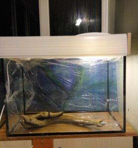 аквариум на 50 и 70 литров