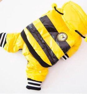 Комбинезон Пчелка
