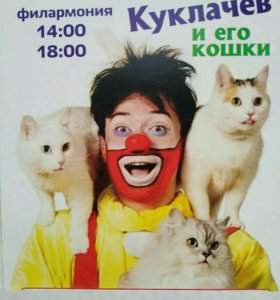 Шоу Куклачева с кошками