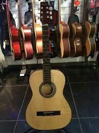 Акустическая гитара Brigitta и утепленный чехол