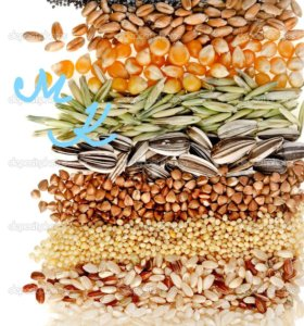 Фуражное зерно в мешках