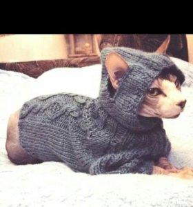 Свитера , одежда для кошек , собак .