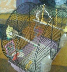 Большая клетка для попугайчика