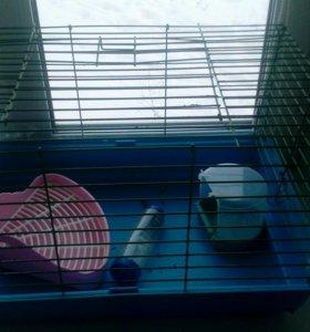 Клетка и аксессуары для кролика.