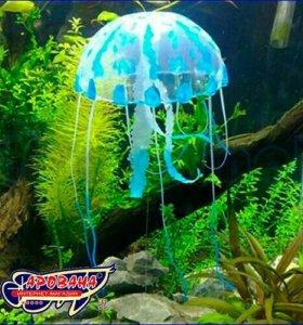 Медузы аквариум