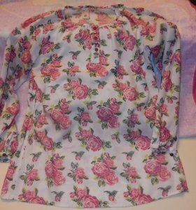 Блуза цветная.