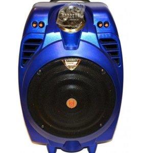 Переносная акустическая система