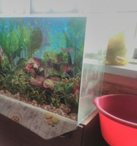 Продам аквариум 70-50