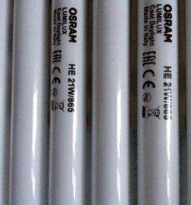 Лампа люминесцентная OSRAM HE 21/865