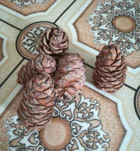 Шишка кедровая,орехи чистые
