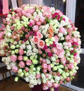 101 кустовая роза спб в питере