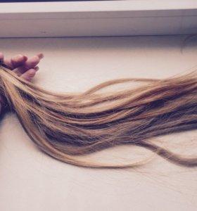Волосы на капсулах