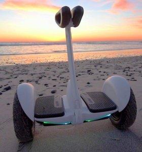 Сигвей mini robot