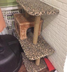 Дом для кошки 🏠
