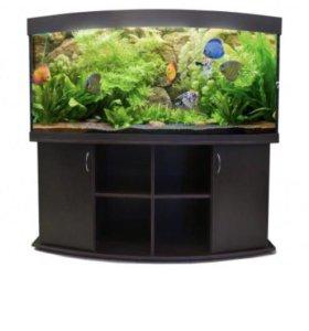 Панорамный аквариум 600 литров