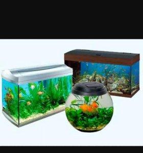 Все виды работ с аквариумом,склейка, ремонт
