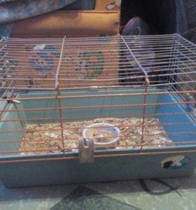 Продам клетку для морской свинки б/у