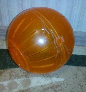 Хомяк,шар,поилка,колесо,аквариум(для хомяка)