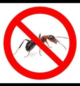 Травля насекомых!