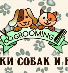 Стрижки собак и кошек