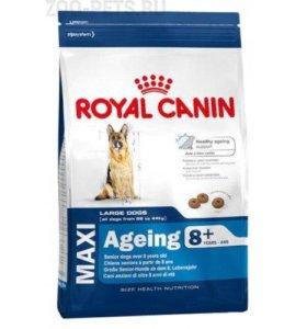 корм для собак Royal Canin Maxi Ageing 8+ 15 кг