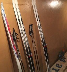 Беговые лыжи Fischer Summit Crown