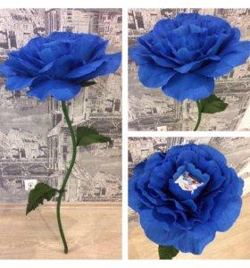 Роза с коробочкой конфет внутри