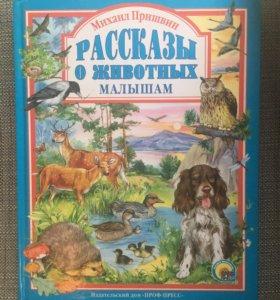 Книга Подарочная А4