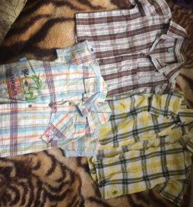 Рубашки и футболки на мальчика