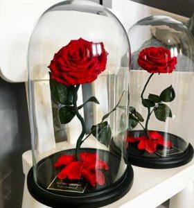 Роза в колбе с изогнутым стеблем 😍