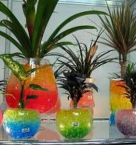 Гидро гель (аквагрунт) для растений новый