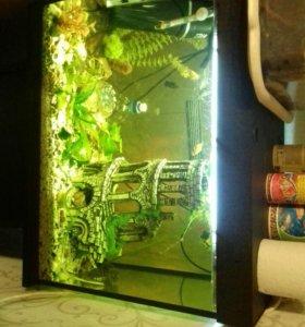 Аквариум новый .без рыб.