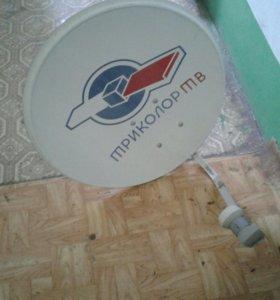 Тарелка триколор