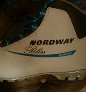 Лыжные ботинки NORDWAY Bliss Biometric, размер 39