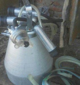 Аппарат для дойки каров