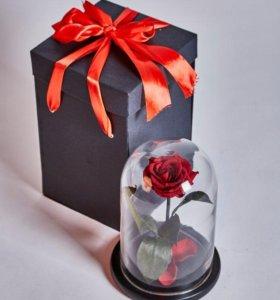 Роза в колбе + подарки