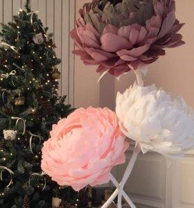 Ростовые цветы для декора интерьера