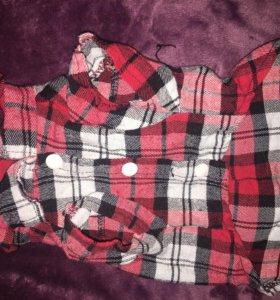 Рубашка для собаки