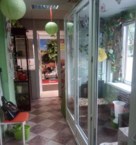 Холодильная витрина для цветов